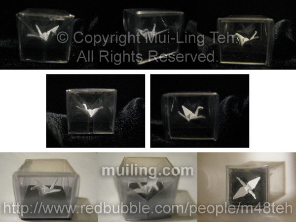 Miniature origami crane folded by Mui-Ling Teh in a hand-made acetate box folded by Mui-Ling Teh